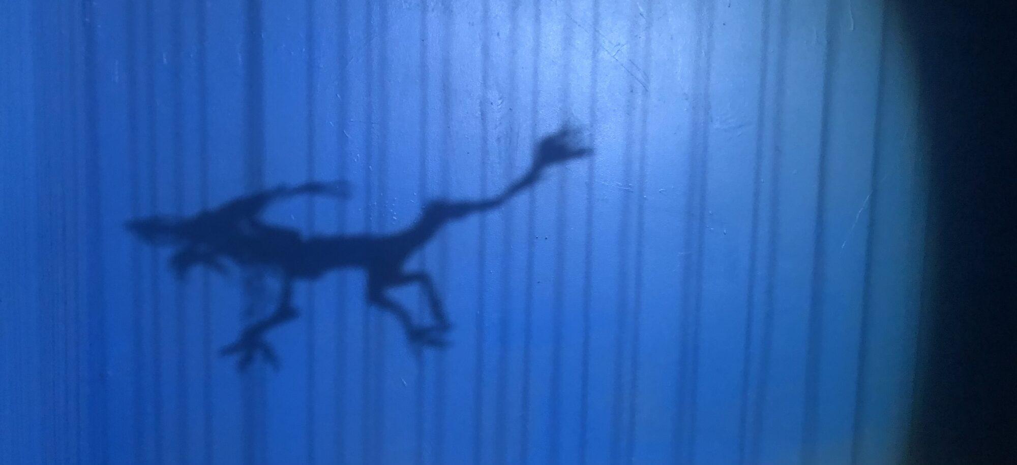 紙切師:辻笙展示「青い龍のものがたり」